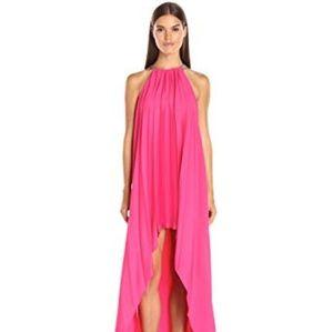 Halston Heritage Gown